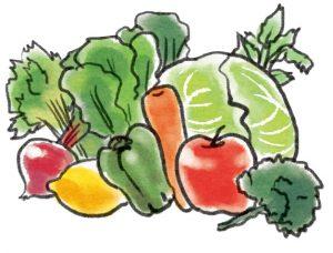 食物繊維の野菜と果物