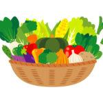 野菜 トマト ニンジン