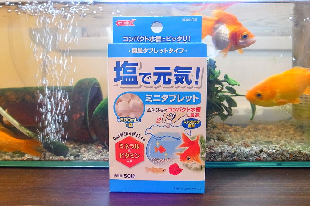 金魚 病気 塩 元気